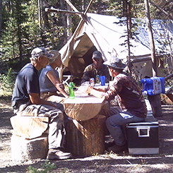 Group At Camp Site